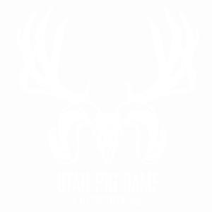 UBGO_logo-white